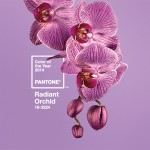 2014 Pantone Color of the Year