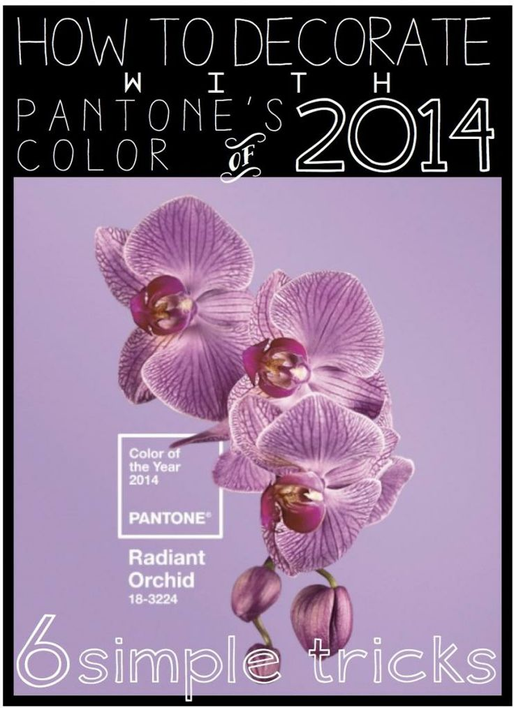 4 Pantone Color of the Year