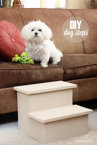 Love your dog? Create one or more of these easy DIY dog projects from tipsaholic.com #dog #dogs #diy #pets