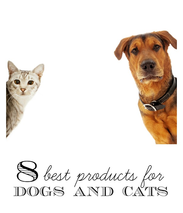 Have a cat or dog? There are so many things you could buy them, but we are sharing our favorites. 8 Best Products for Dogs and Cats via tipsaholic.com #pets #cats #dogs