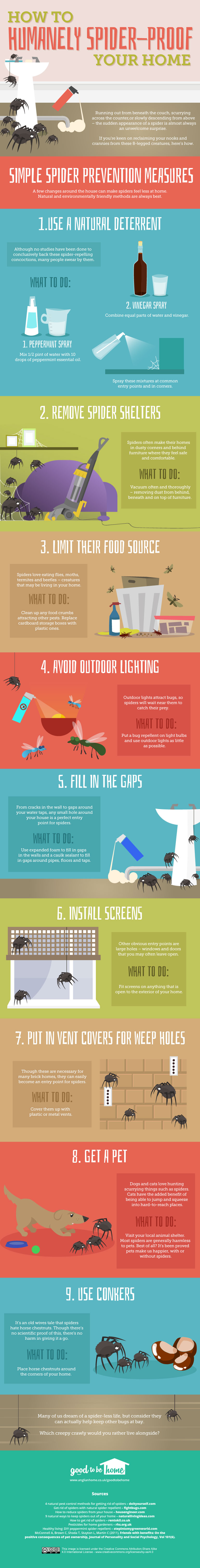 Spiders can be helpful in getting rid of pesky bugs, but they don't need to take over the home. How to Get Rid of Spiders from Your Home Infograpic at tipsaholic.com #spiders #spider #bugs