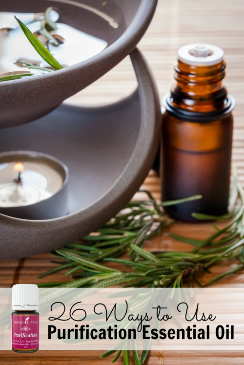 Purification essential oil can do so much for your health and your home! Here are 26 ways to use purification essential oil that you need to know about now. 26 Ways to Use Purification Essential Oil via @tipsaholic #oils #youngliving #essentialoils #purificationoil #purification