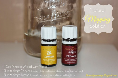 EssentialOils_Mopping